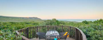 Why Grootbos Private Nature Reserve should be at the top of your eco-friendly travel list for 2019