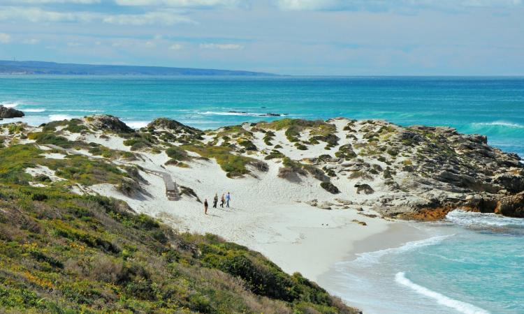Discover the wonderful world of fynbos at De Hoop Nature Reserve on a family-friendly getaway