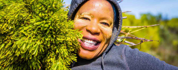 Sustainable use of land vital for the protection of fynbos